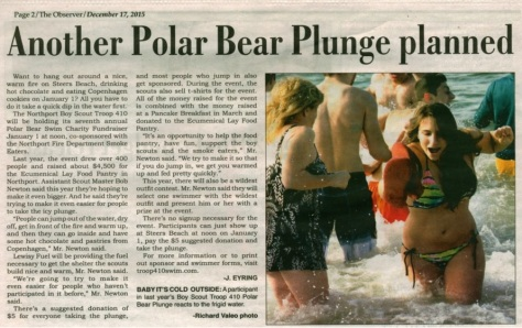 plunge article